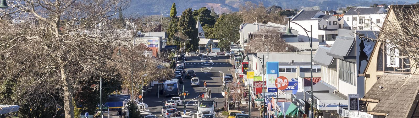 LJ Hooker Howick office street view image